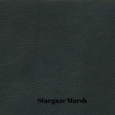 Stargo Marsh.jpg