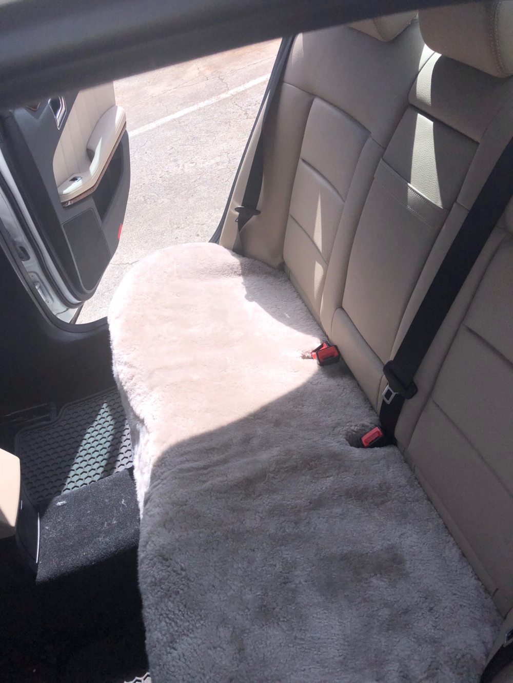2012 Mercedes E 350 -Tailor-Made Rear Seat (Mushroom)