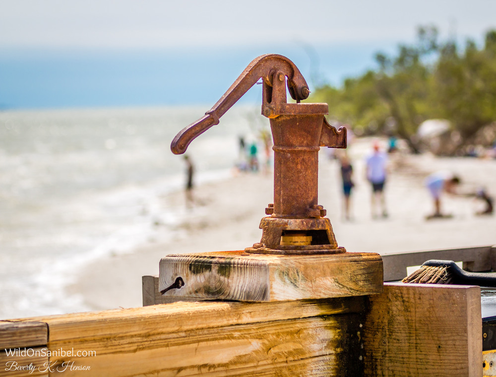 The pier has this handy fish cleaning station, complete with a cool hand pump.