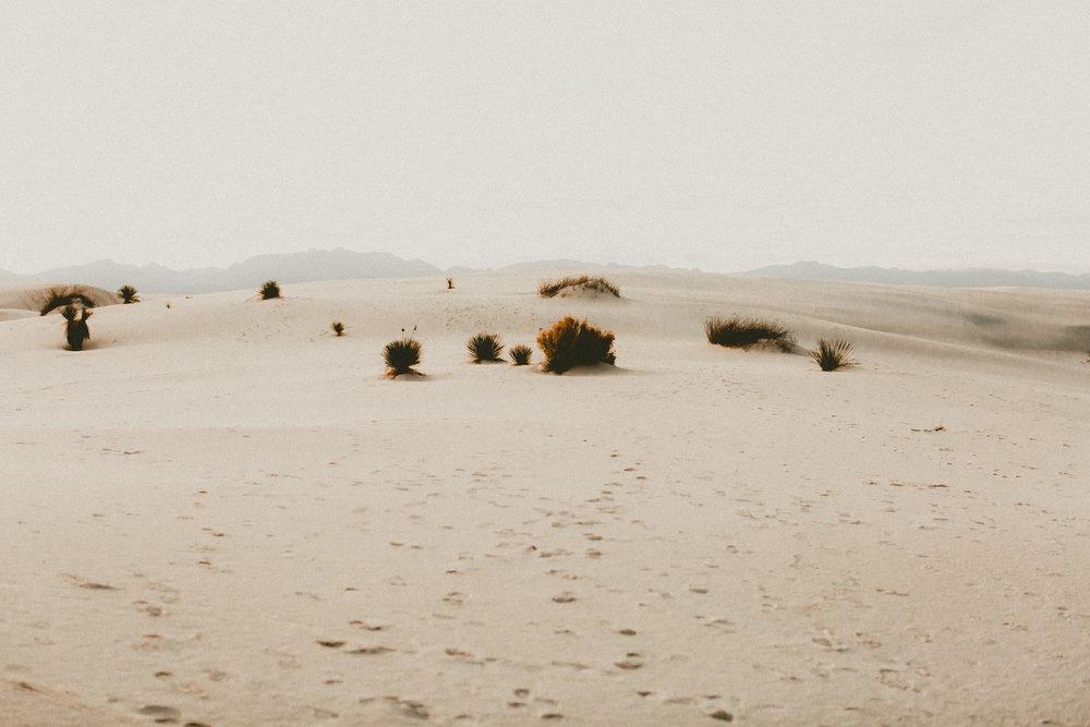 katmalonephoto_jel_zach_new_mexico_engagements_desert_121.jpg