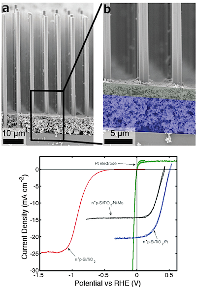 Adapted from Shaner, M. R., McKone, J. R., Gray, H. B. & Lewis, N. S. Functional integration of Ni–Mo  electrocatalysts  with  Si microwire array   photocathodes  to simultaneously achieve high fill factors and light-limited  photocurrent  densities for solar-driven hydrogen evolution. Energy & Environmental Science,   DOI: 10.1039/C5EE01076D   (2015) with permission of The Royal Society of Chemistry .