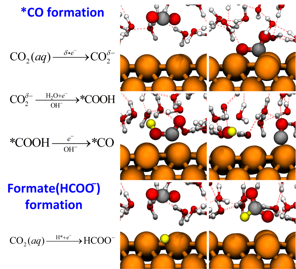 Reprinted with permission from   Cheng, T., Xiao, H. & Goddard, W. A. Reaction Mechanisms for the Electrochemical Reduction of CO2 to CO and Formate on the Cu(100) Surface at 298 K from Quantum Mechanics Free Energy Calculations with Explicit Water. Journal of the American Chemical Society, DOI: 10.1021/jacs.6b08534 (2016). Copyright ACS (2016).   The most favorable kinetic pathways for the CO formation and formate formation pathway snapshots from AIMD simulations at 298 K and pH 7.