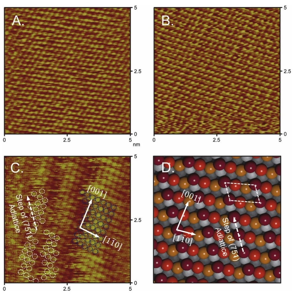Atomically resolved in situ ECSTM images of (A) Cu(111), (B) Cu(100), and (C) Cu (751) thin films. (D) An ideal atomic model of the Cu(751) surface is used to compare step orientations. Reprinted from Hahn et al. Engineering Cu surfaces for the electrocatalytic conversion of CO2: Controlling selectivity toward oxygenates and hydrocarbons. PNAS 114(23), 5918-5923, DOI: 10.1073/pnas.1618935114 (2017).