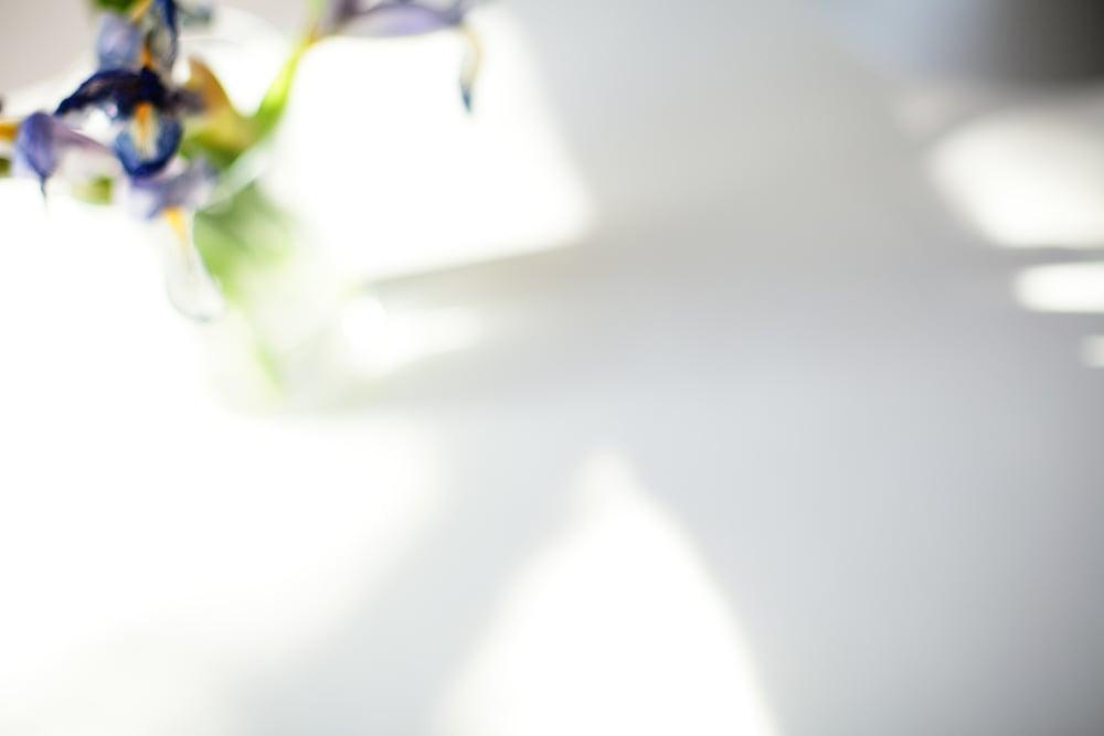 Naomi Yamada Creative_iris Still Life.jpg