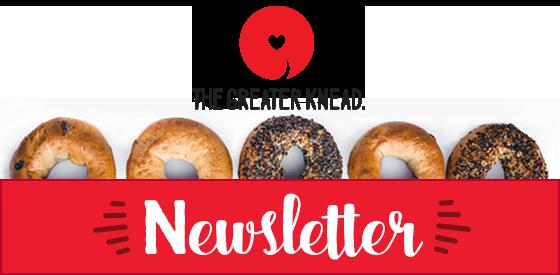Email Newsletter Header