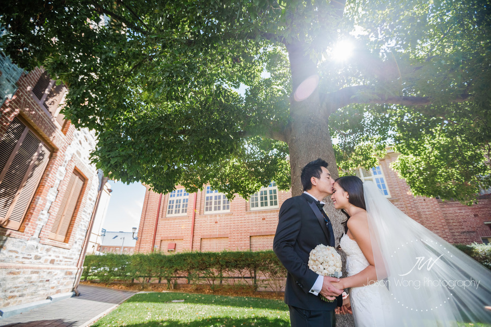 kiss-under-a-tree-with-sunlight-shining-through-so-romantic.jpg