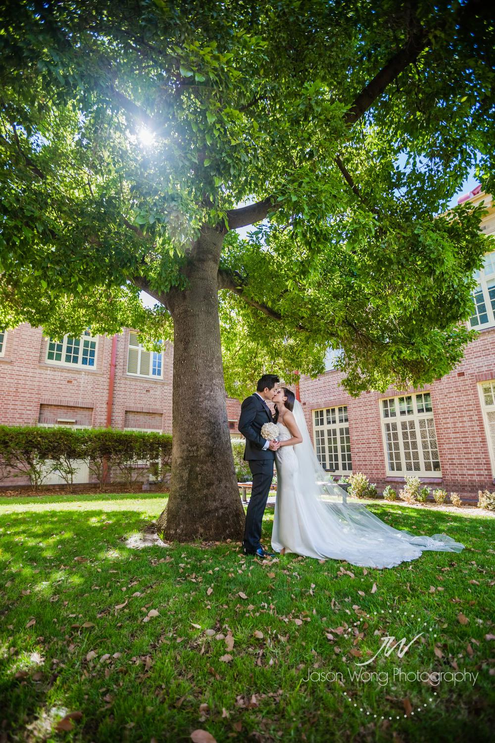 tree-so-green-and-newlyweds-so-sweet.jpg