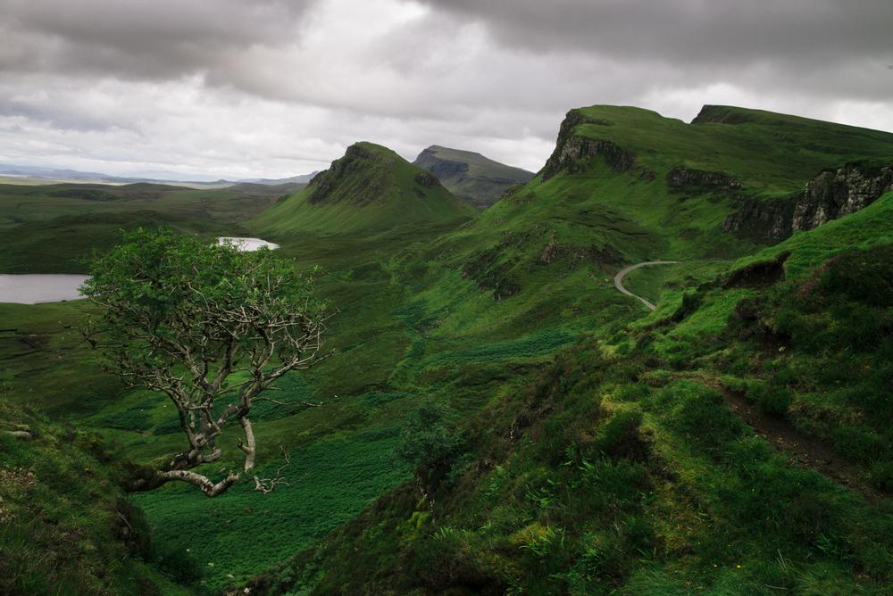 AbramGoglanian_Scotland-6.jpg