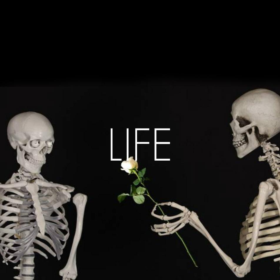 life icon.jpg