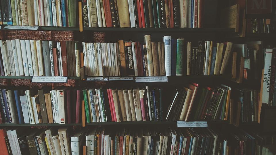 bookcase-1869616_960_720.jpg