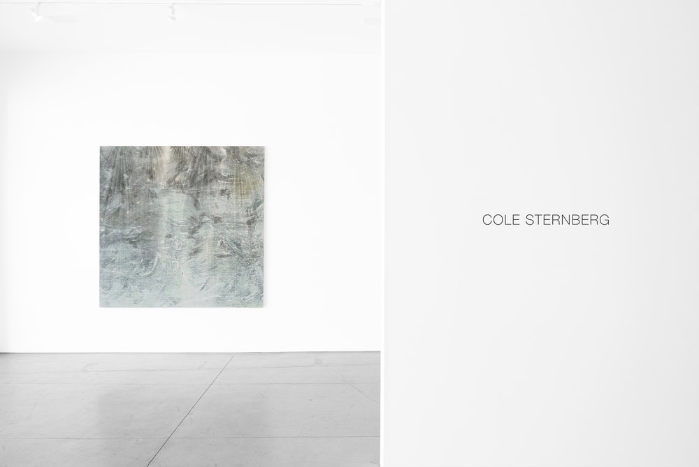 Cole Sternberg Solo Exhibition 2019_Peter Blake Gallery_Installation View_5.jpg
