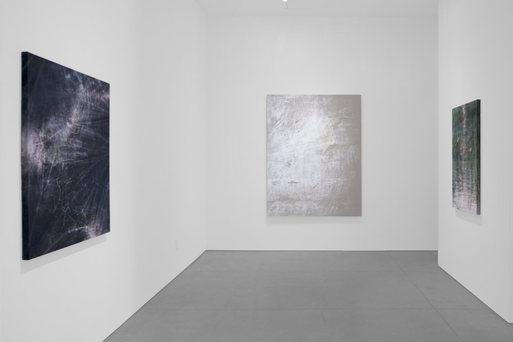 Cole Sternberg Solo Exhibition 2019_Peter Blake Gallery_Installation View_24.jpg