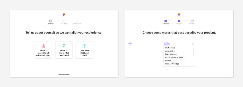 intro_survey_visualexample.jpg
