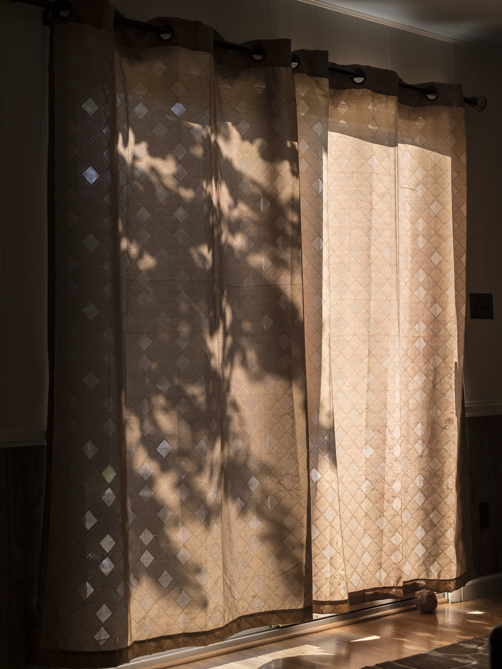 Shadows , 2016, Union City, TN