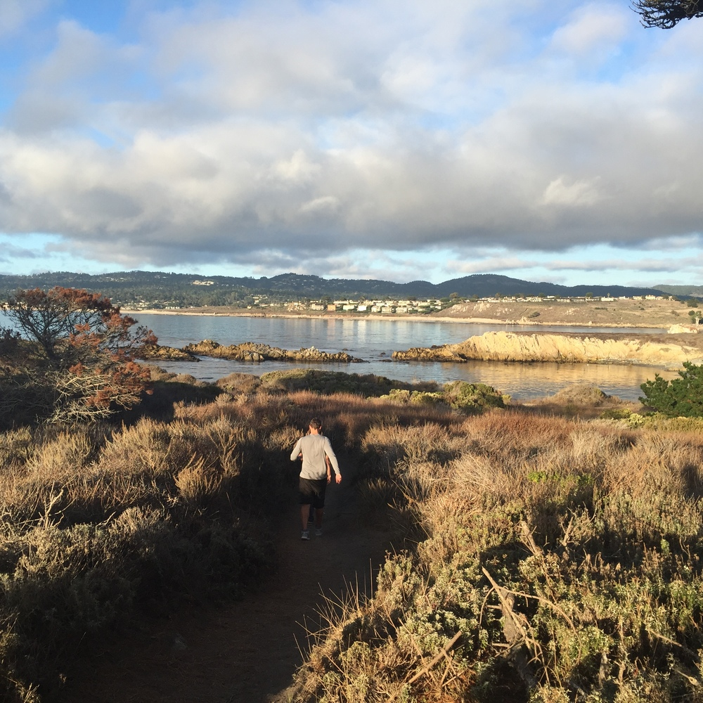 Hiking the moss cove trail at Point Lobos looking towards Monastery Beach