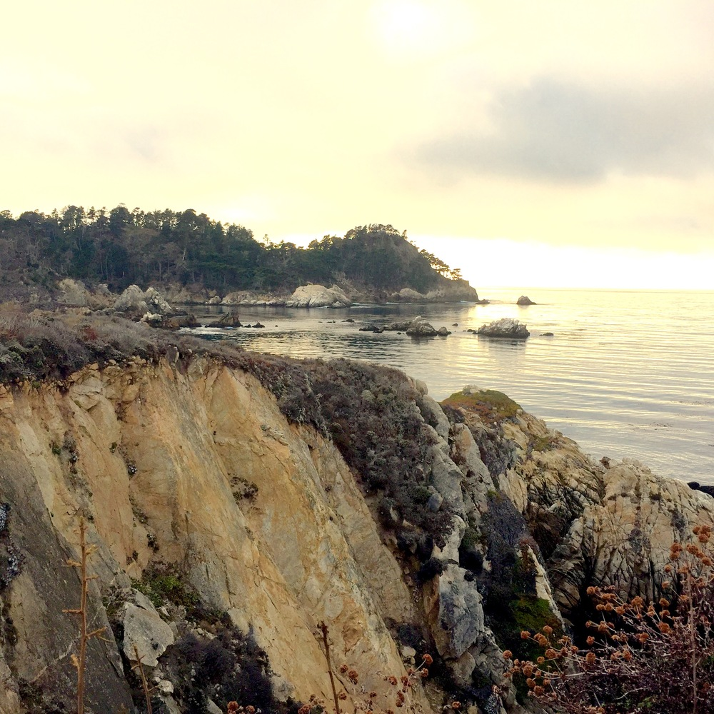 Point Lobos just before dusk