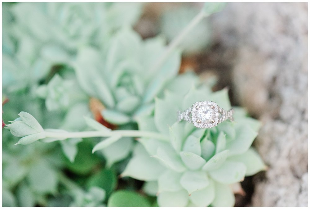 Deep-Cut-Gardens-Greenhouse-Engagement-Session-NJ-Photo-_0028.jpg