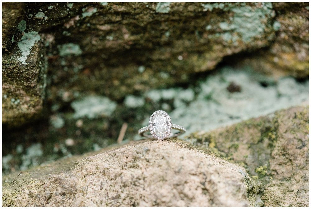 Cross-Estate-Gardens-Bernardsville-NJ-Engagement-Session-Photo_0056.jpg