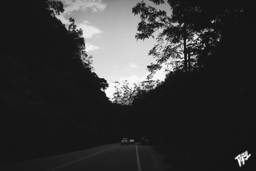 En route to Cameron Highlands.