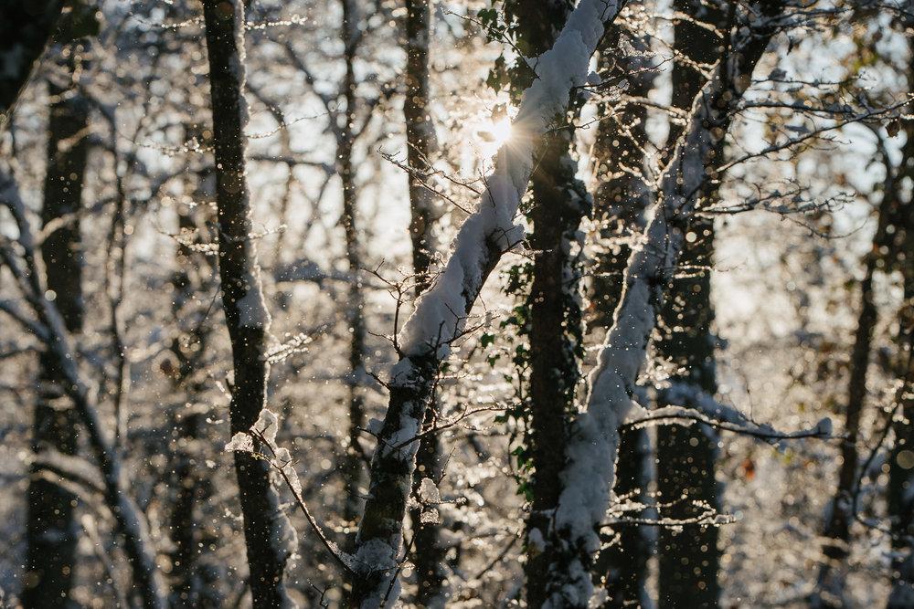 Winter snowfall in Worcestershire-3.jpg