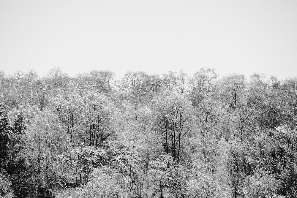 Winter snowfall in Worcestershire-6.jpg
