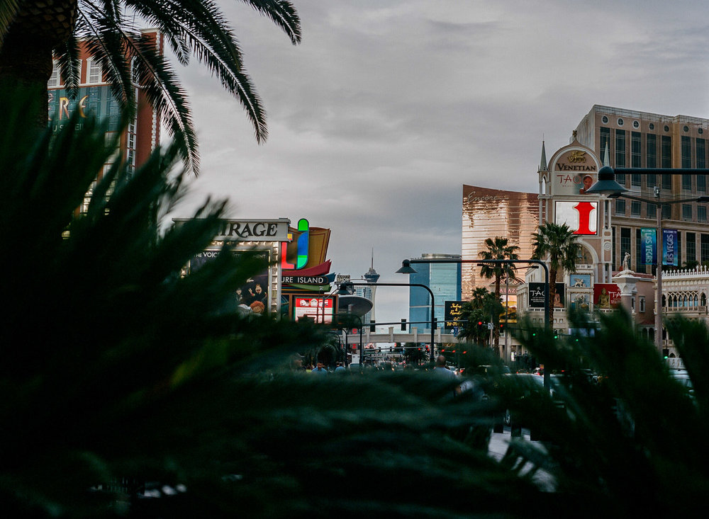 Las Vegas Film Photography-42.jpg