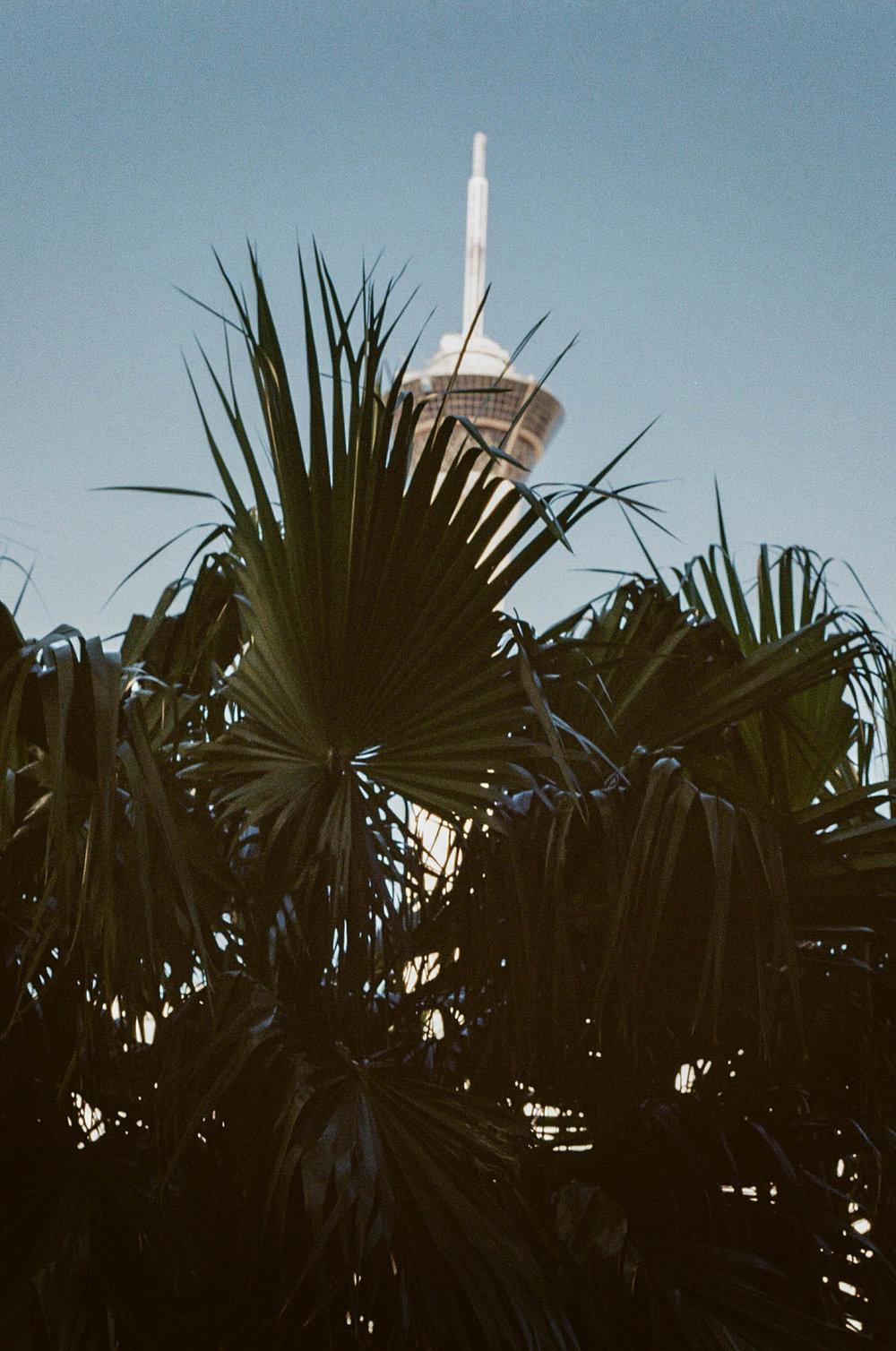 Las Vegas Film Photography-1-2.jpg