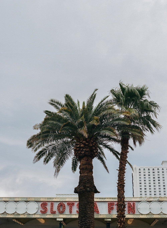 Las Vegas Photography-1-2.jpg