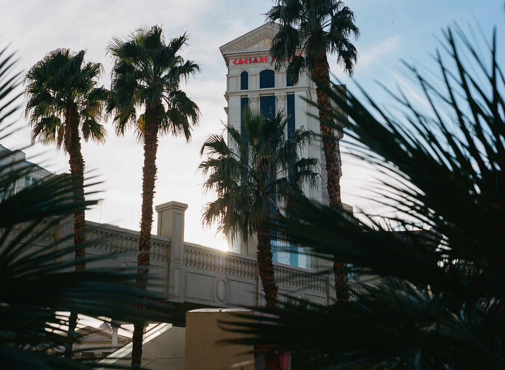 Las Vegas Film Photography-51.jpg