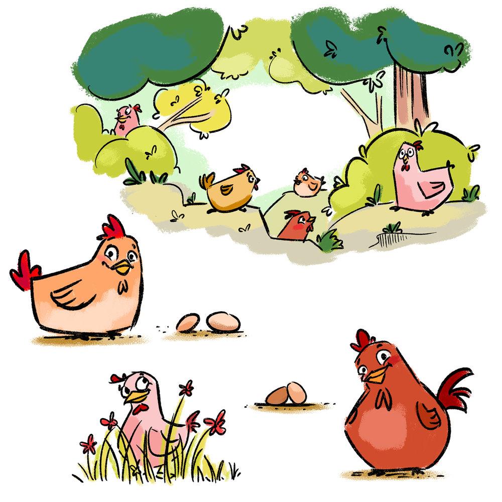 262_chicken1.jpg