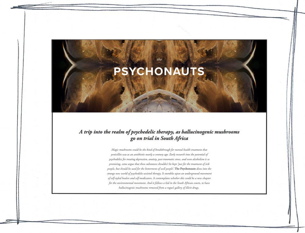 Psychonauts-framed.jpg