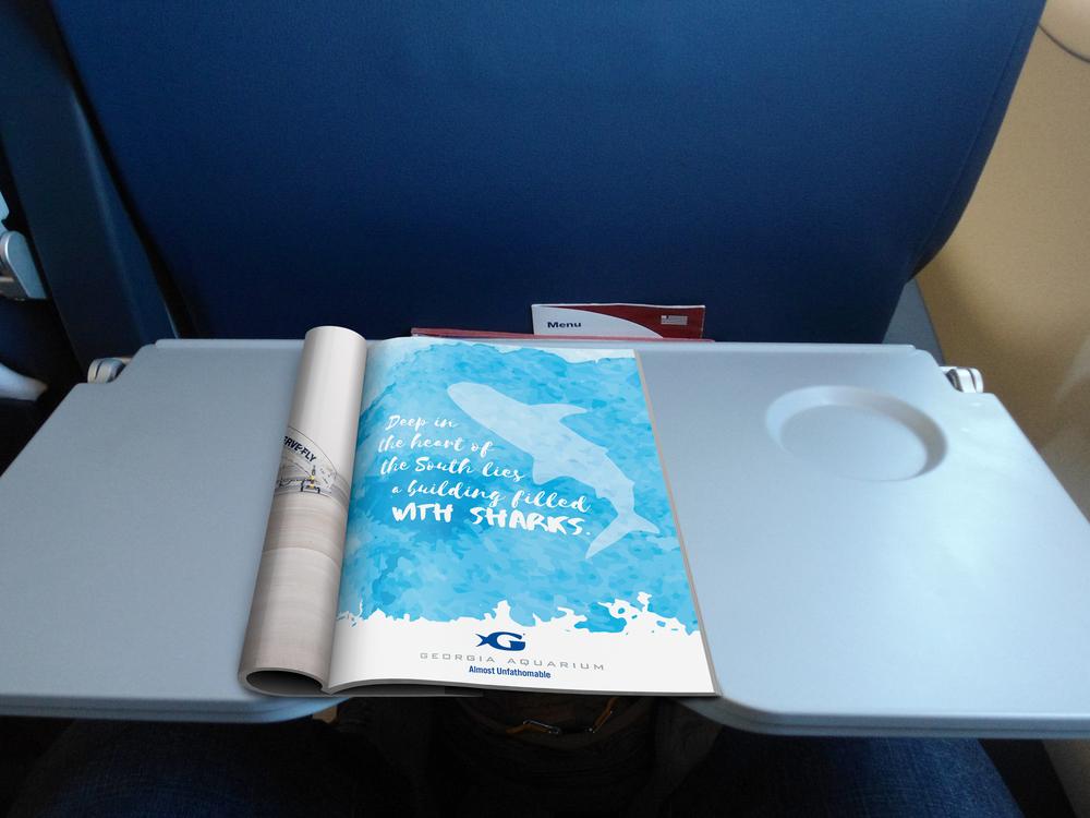 SharksAirplane.jpg