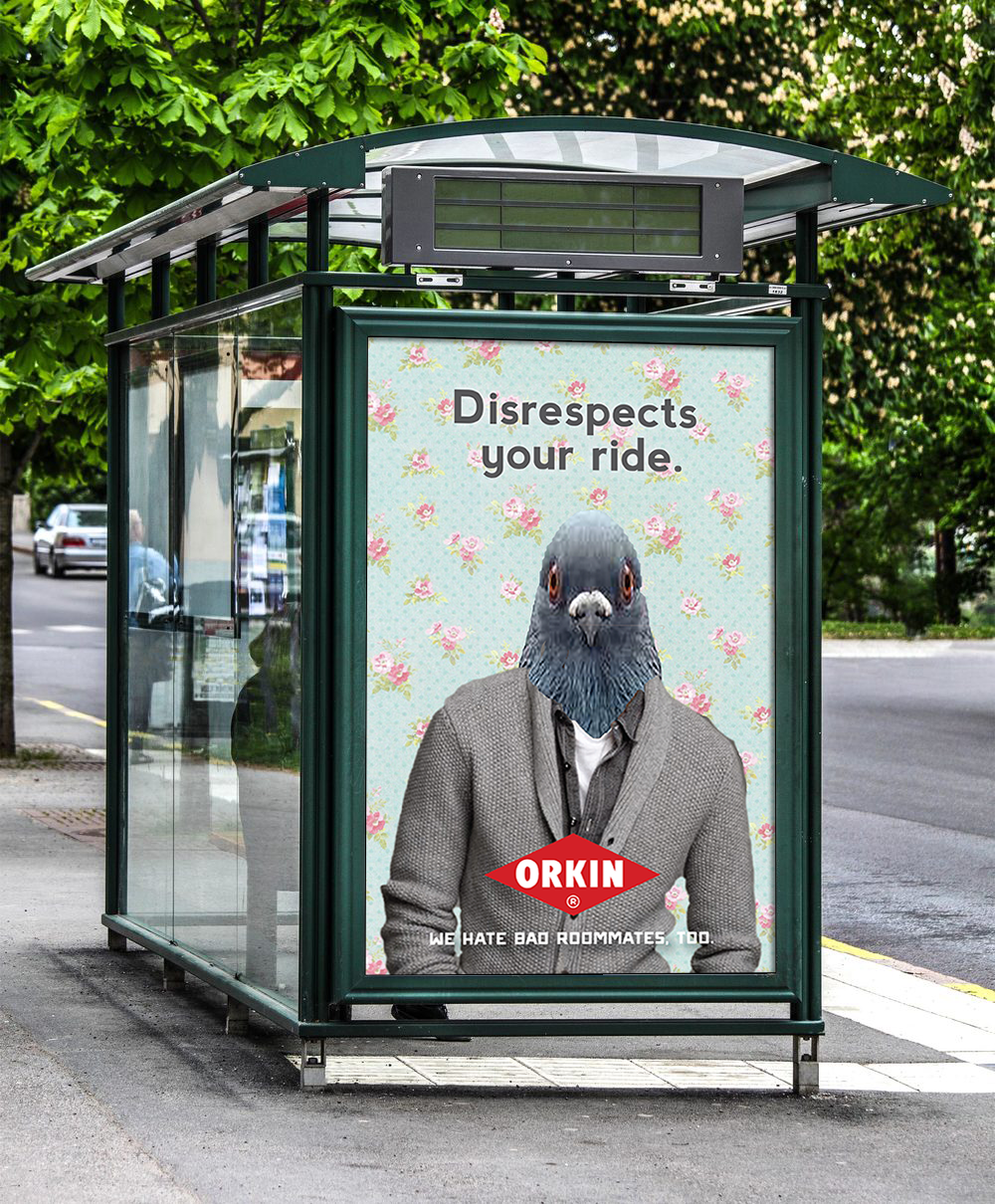 Bus Shelter_Pigeon.png