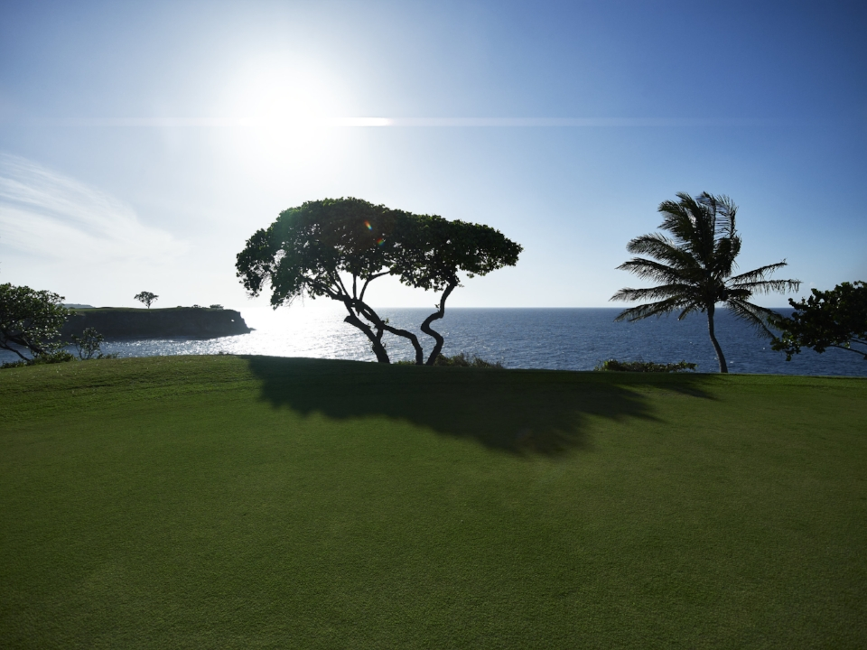 Playa Grande Golf Course_High Res_10799.jpg