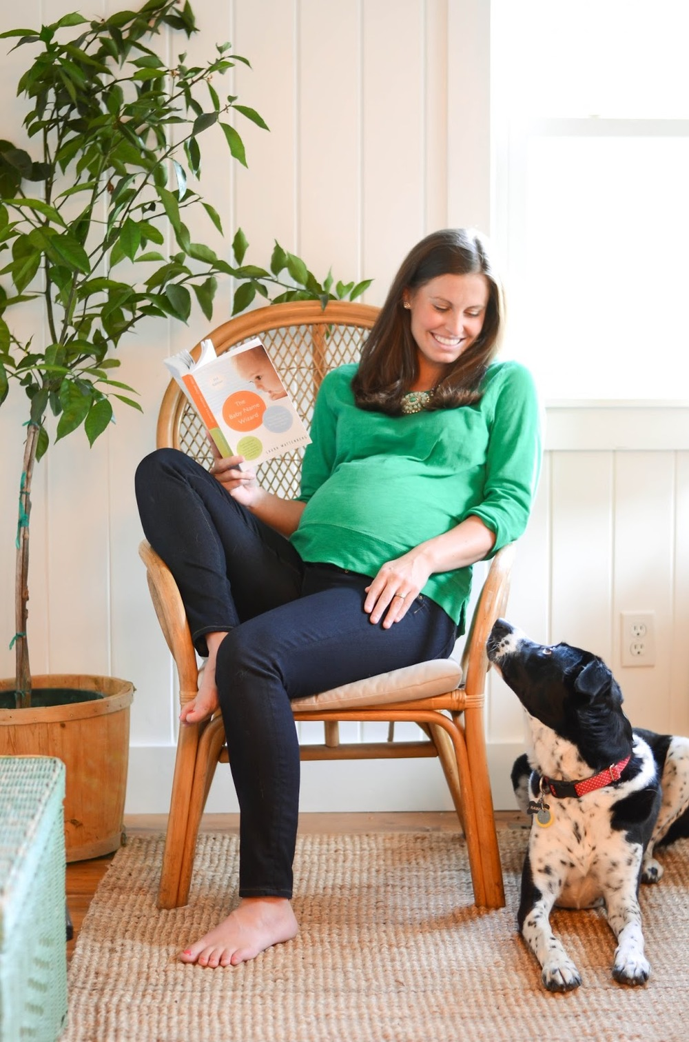 Preparing+Dog+For+Baby,+Newborn+(1).jpg