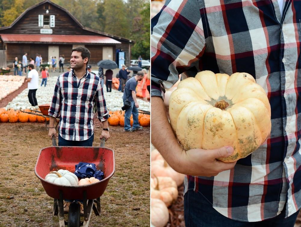 Georgia%2BPumpkin%2BPatch.jpg