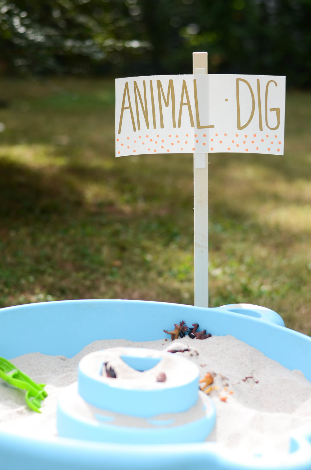 Toddler Birthday Party Ideas | Animal Dig