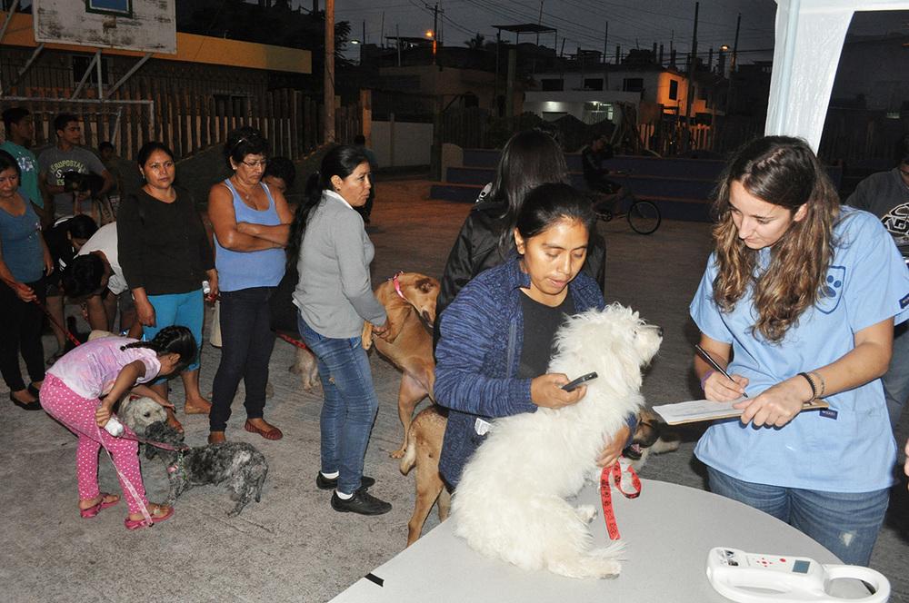 una clínica para mascotas en galápagos (foto © darwin animal doctors)