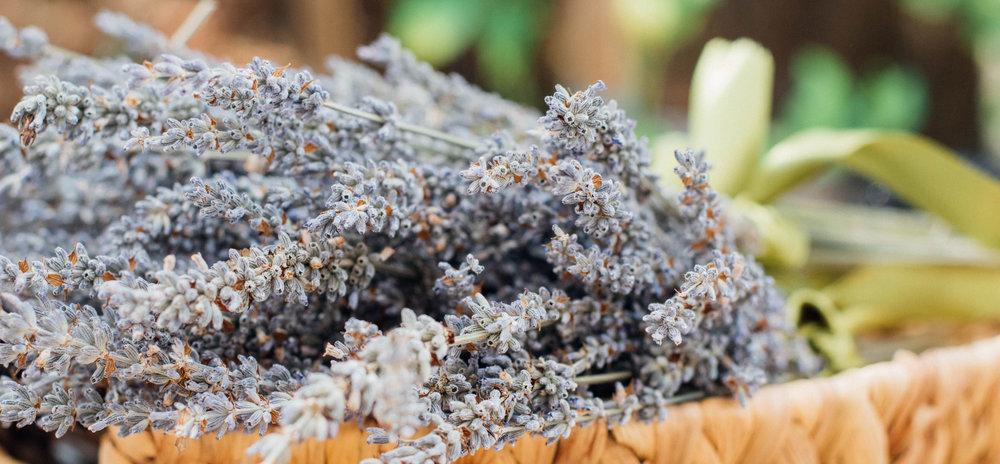 15 Uses: Lavender Oil -