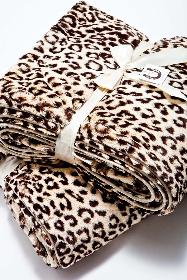 max-daniel-jaguar.jpg