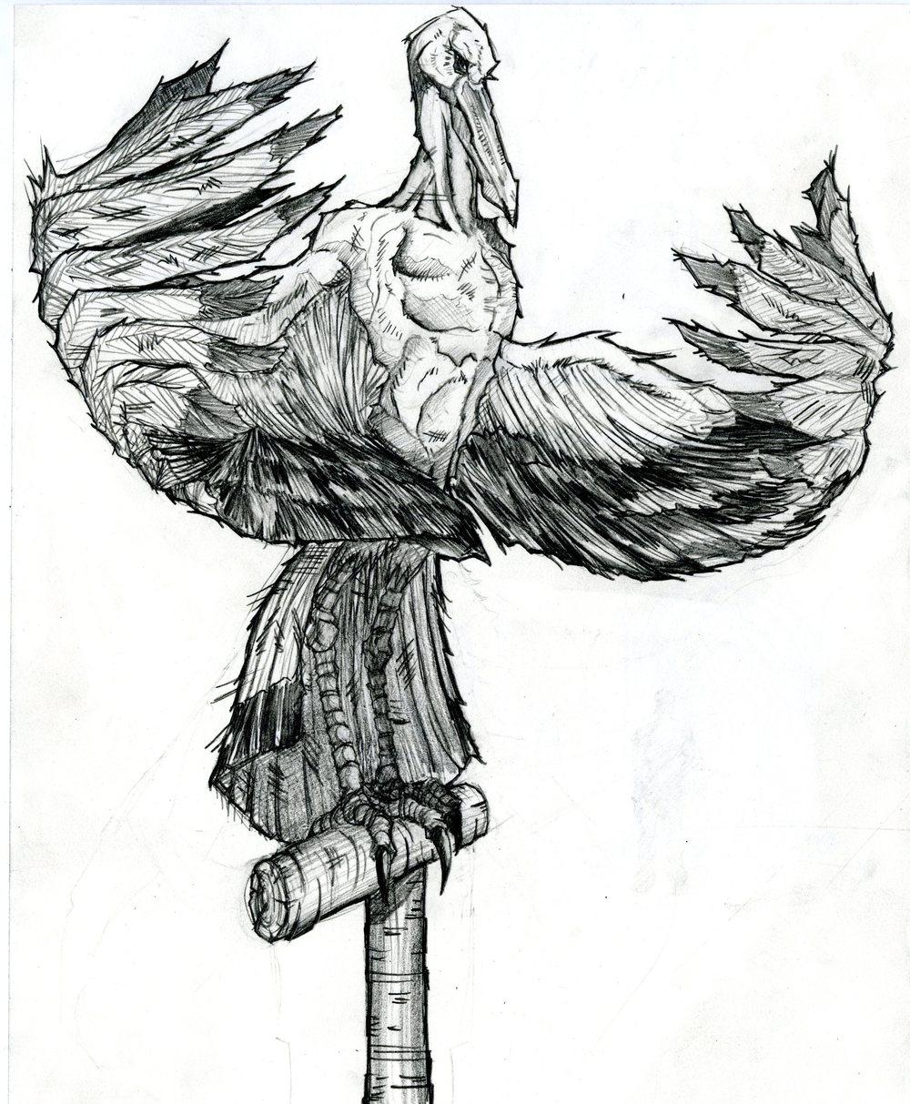 bird001.jpg
