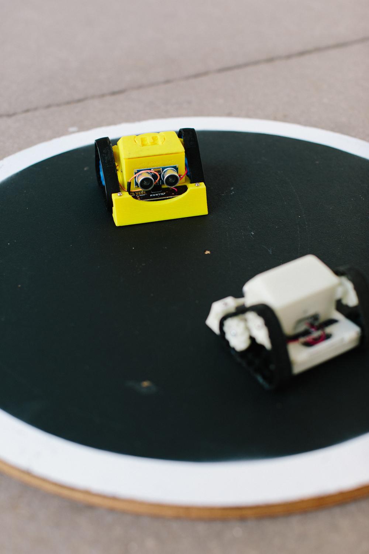 LCPWSSumoRobot-11.jpg