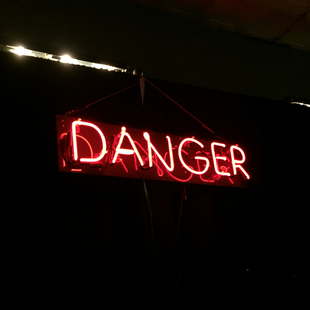 Danger, By Lindsey Liss