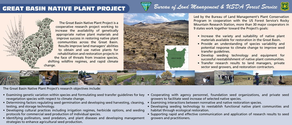 Great Basin Native Plant Project Poster [.jpg]