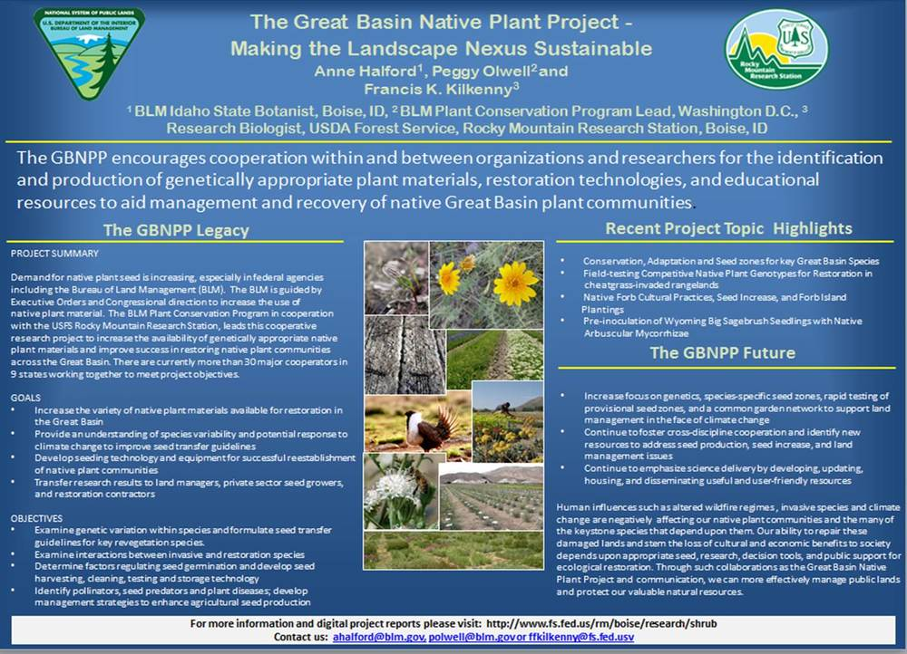 Anne Halford Great Basin Native Plant Project Poster [.jpg]