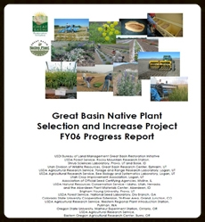 2006 Annual Progress Report