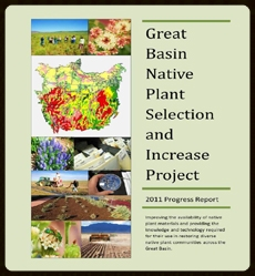 2011 Annual Progress Report