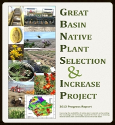 2012 Annual Progress Report