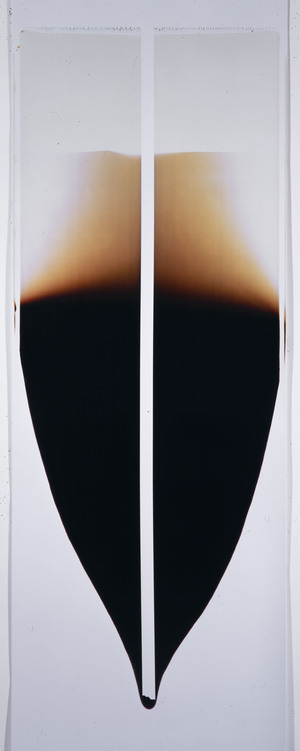 "Ellen Carey,  Pull with Flare and Line  Polaroid 20 X 24 Color Positive Print, 90""H x 22""W 2002 ––"