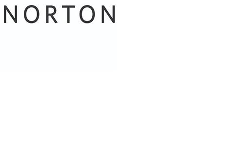 Norton+Museum+of+Art+Ellen+Carey+Camera-less+Photography+2.jpg